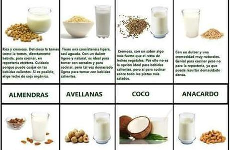 Alternativas vegetales a la leche de vaca