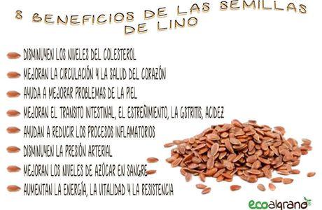 Los maravillosos beneficios de las semillas de lino