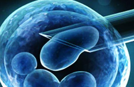 Investigación de células madre y fibromialgia
