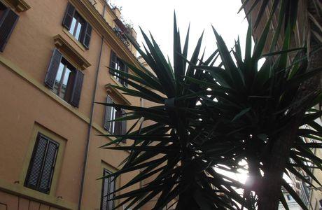 Rome : un superbe voyage