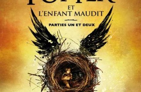 Harry Potter et l'enfant maudit ◄Critique 1