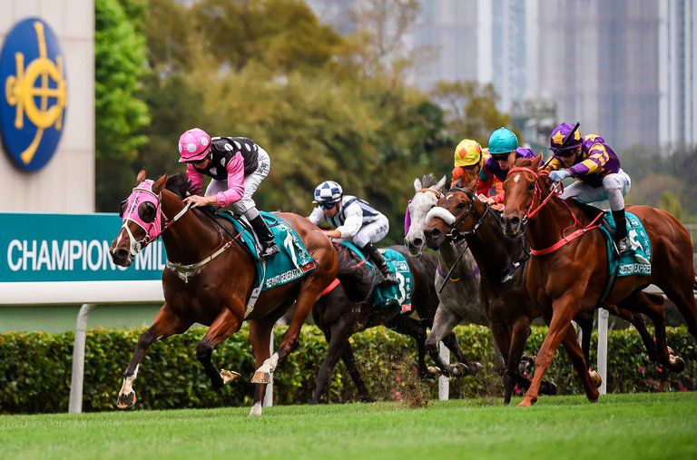 Instructions for betting directly on horse racing - Guidelines, Tips & Tricks and Strategies - Casino Games