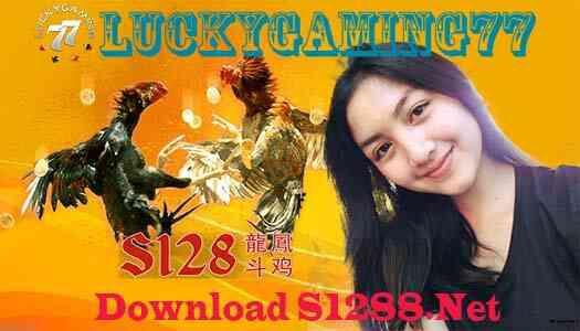 Download S1288 Net