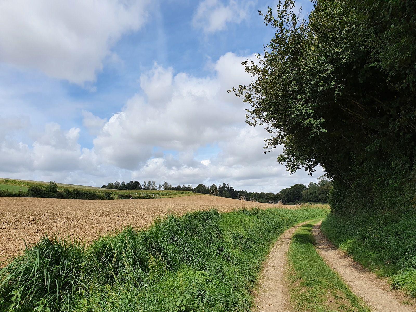27 août 2020 - Azincourt et les vallons de Blangy-sur-Ternoise
