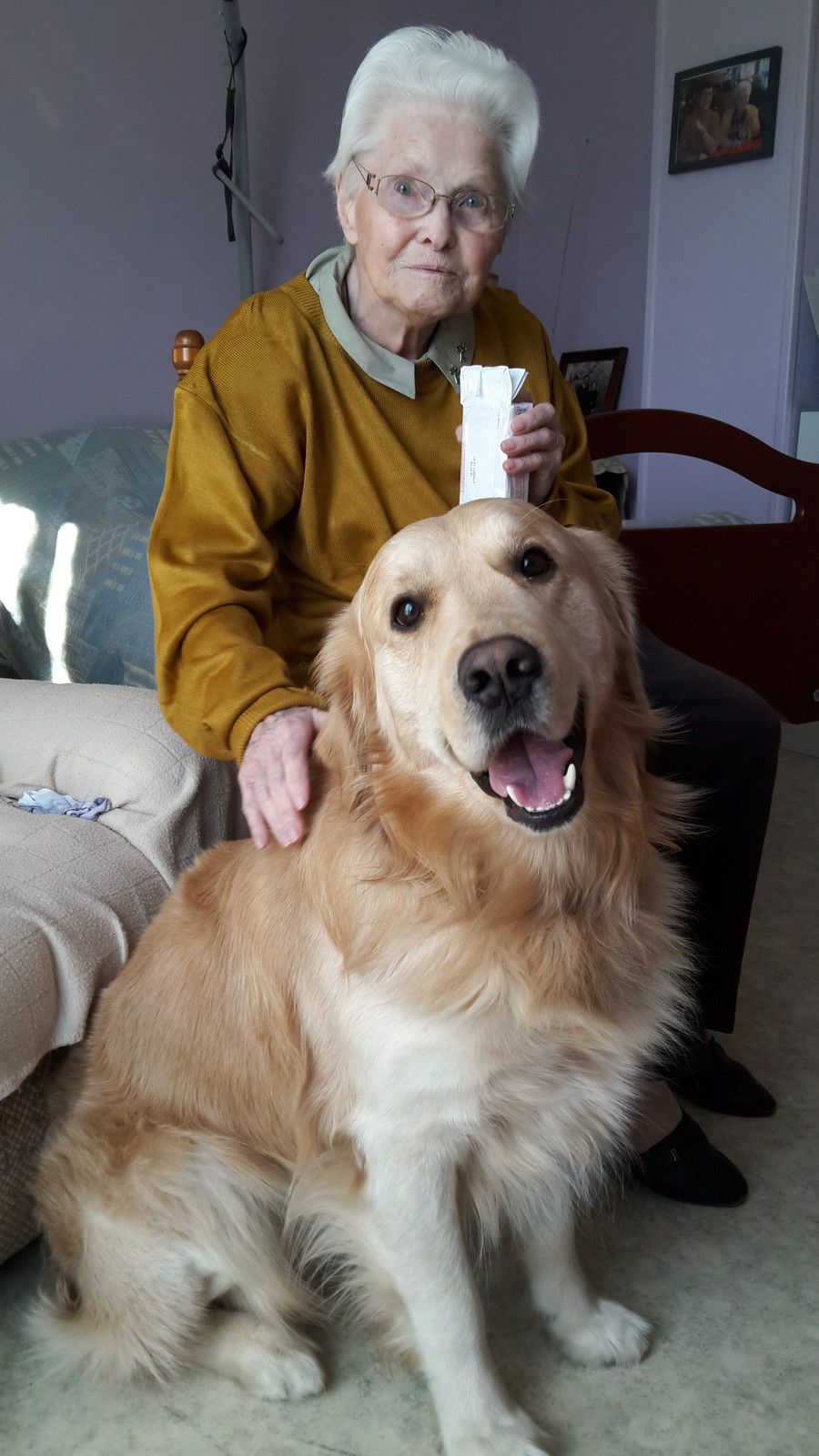 Les début de Major en chien-visiteur