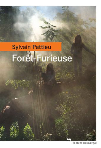 Sylvain Pattieu chez Folies d'encre à Aulnay-sous-Bois pour Forêt furieuse