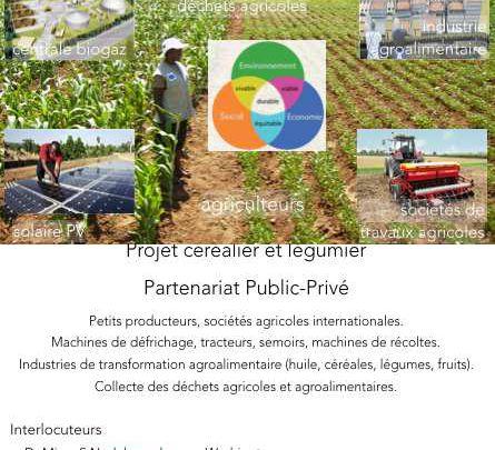 Laurent lasselin pr sident hum 39 afrique ong pr sident for Construction piscine valenciennes
