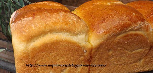 Brioche ou pain au lait Méthode TangZhong,Hokkaïdo  IG bas à la farine Fiberpasta