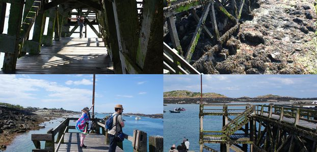 2017-04-29: Normandie Ile Chausey