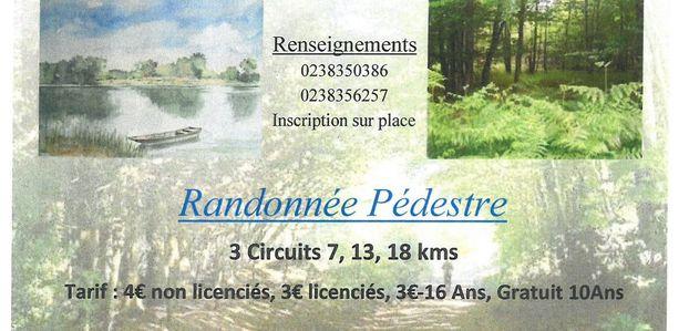 RANDONNEE VTT ET PEDESTRE - 26 Novembre 2017 - Ouzouer sur Loire