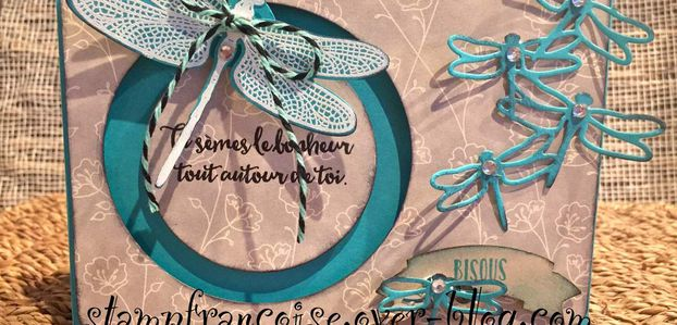 Projet d'Atelier démonstration Stampin Up   sliding star / carte coulissante Songes de libellule / Dragonfly Dreams