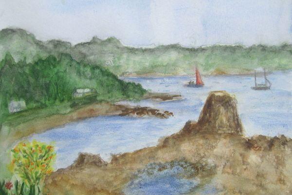 Sur le vif : Le port du Diben à Plougasnou