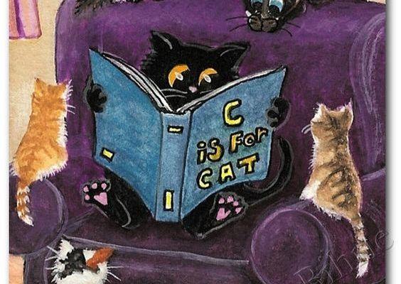 Lecture chat du soir...