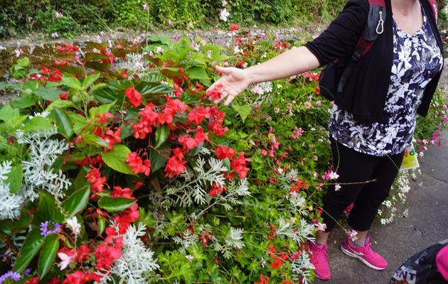 Sortie Jardin de l'Arquebuse à Dijon