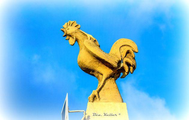 Champillon : Trois Coqs pour le Monument aux Morts