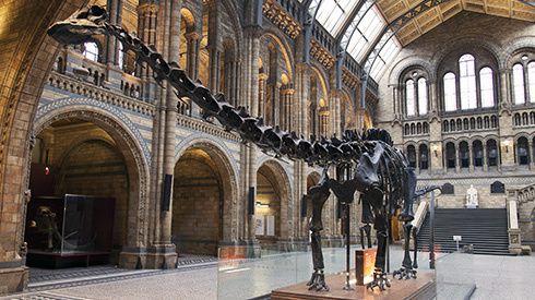 Les 5 musées incontournables de Londres !