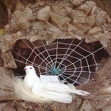 L'araignée protège le prophète.
