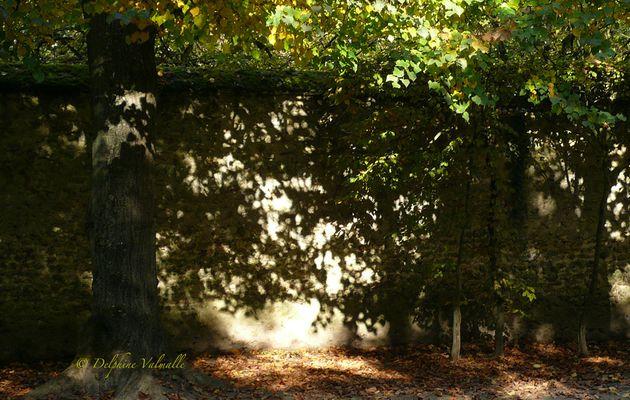 Dans les jardins du @CVersailles, un samedi d'automne...