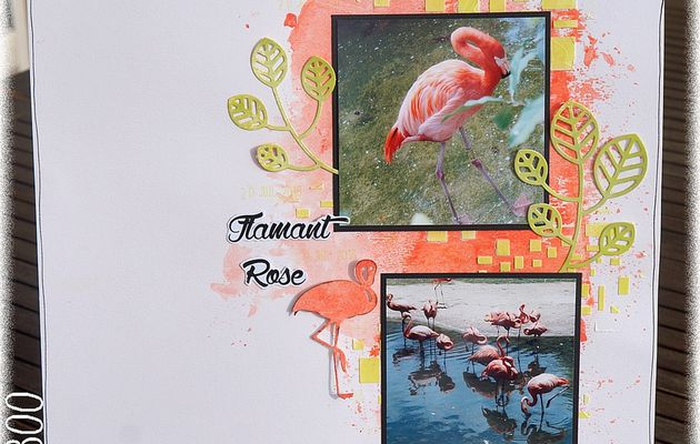[ Page ] Flamant Rose