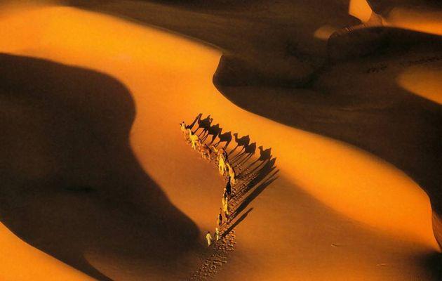 Beauté du désert : Caravan to...