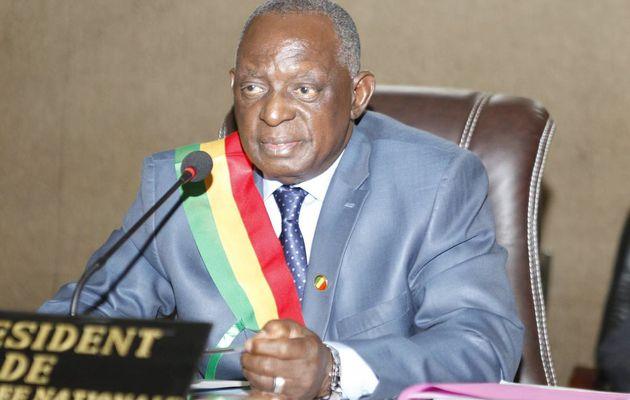Lutte contre le terrorisme au Mali: Les parlementaires de l'OCI en rang serré derrière Issaka Sidibé