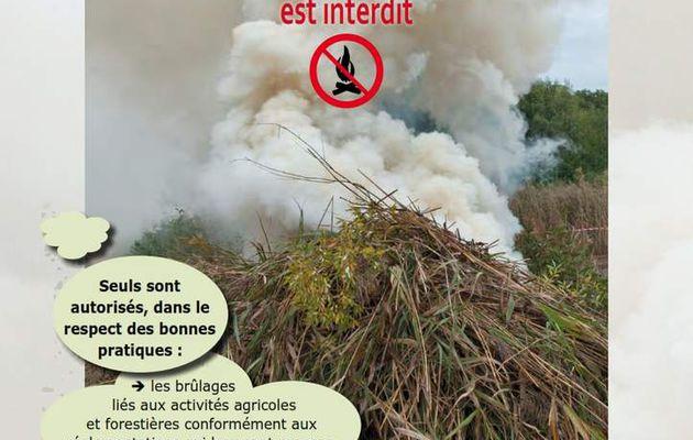 Brûlage des déchets végétaux à l'air libre : INTERDIT