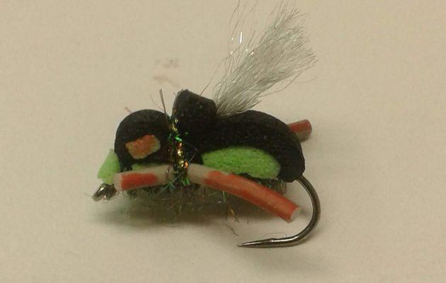 Montage d'un scarabée - Utilisation du Foam