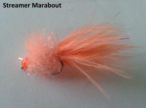 Streamer Marabout