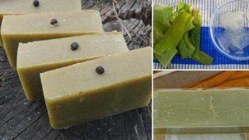 Voir comment faire du savon fait maison aloe vera
