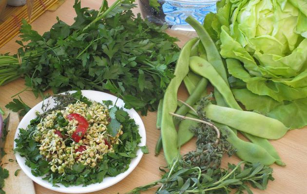 La sant par l 39 alimentation vivante ce blog regroupe - Cuisine vivante pour une sante optimale ...