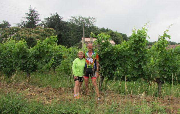 De Créon à La Réole : 52 km