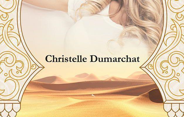 chronique de rencontres dans le désert