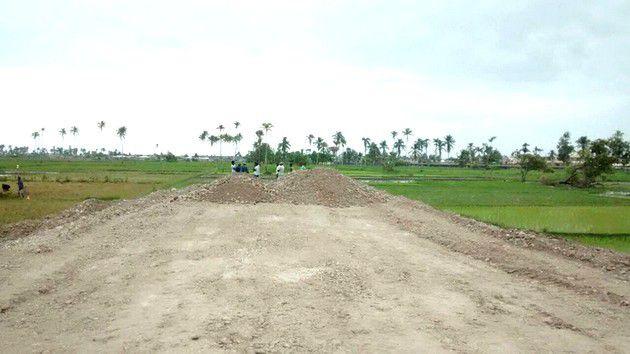 Plaidoyer pour la préservation des rizières périurbaines des Cayes
