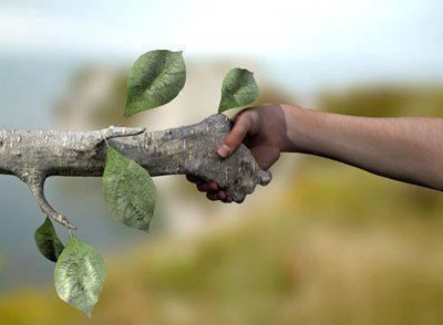 Sauvegardons notre environnement