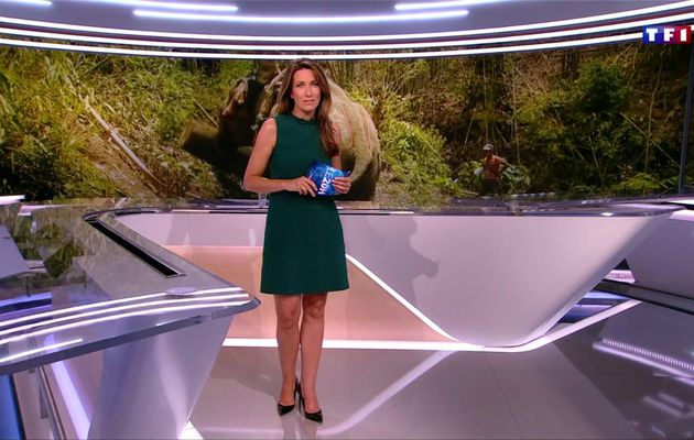 Anne-Claire Coudray JT 20H TF1 le 01.07.2017