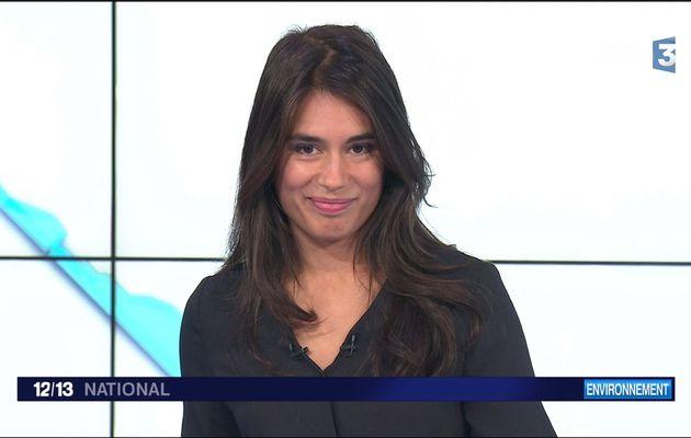 Emilie Tran Nguyen Le 12/13 France 3 le 19.10.2017