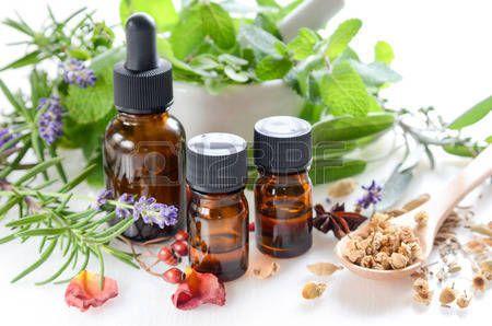 Traitement de la maladie par les plantes