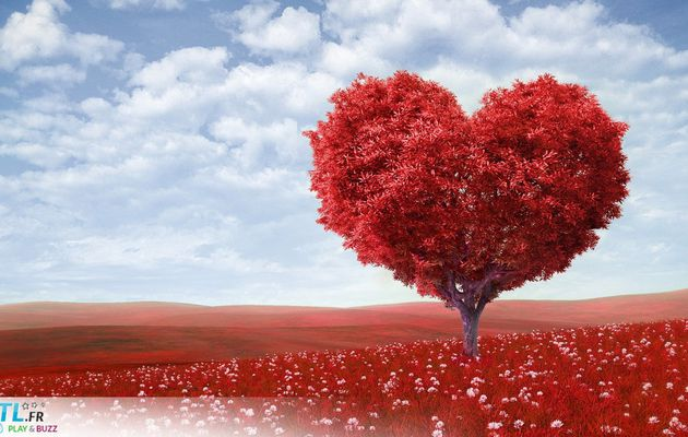 Guérir d'un chagrin d'amour