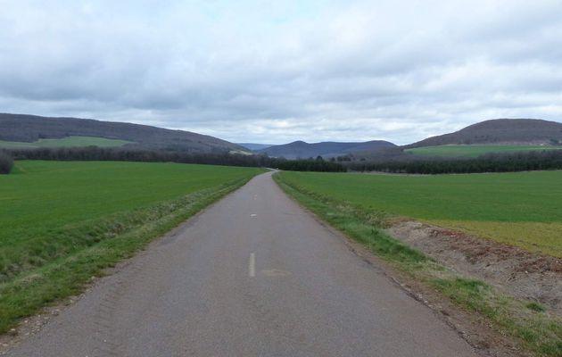 Route de Savigny / Savigny road