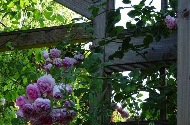 On a testé: Le jardin philosophe