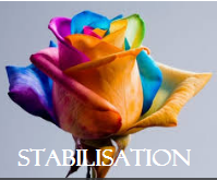 SEMAINE DE STABILISATION 29/05/17 au 02/06/17