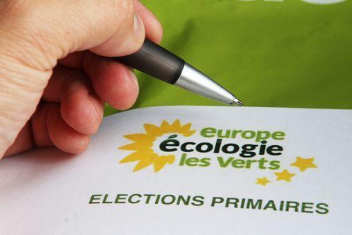 Primaire d'EELV: des verts plus clairs !