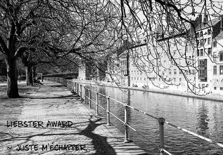 Liebster Award tag #4