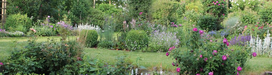 Le jardin évolue si vite.