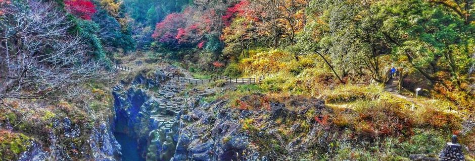 """Momijigari, """"a caccia di foglie rosse"""" in Giappone"""