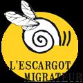"""Armer la société civile d'une culture de la coopération, même à la vitesse d'un """"Escargot Migrateur"""" c'est de l'avenir ce que je veux faire!"""