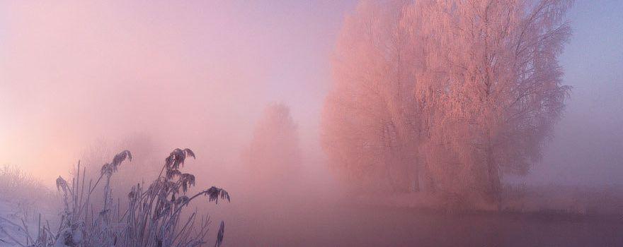 Symphonie de l'hiver