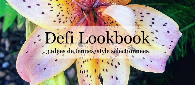 • Défi Lookbook •