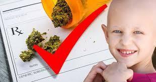 L'industrie pharmaceutique admet enfin que le cannabis tue les cellules cancéreuses