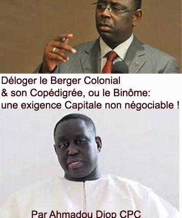 Déloger le Berger Colonial et Son Co pédigrée, ou le Binôme : une exigence capitale non négociable ! Par ahmadou Diop.